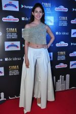 Amyra Dastur at siima awards press meet on 3rd June 2016 (57)_5752d272ca3bc.JPG