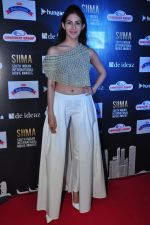 Amyra Dastur at siima awards press meet on 3rd June 2016 (58)_5752d274622b8.JPG