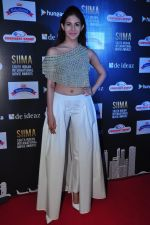 Amyra Dastur at siima awards press meet on 3rd June 2016 (59)_5752d27591444.JPG