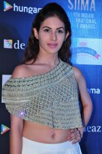 Amyra Dastur at siima awards press meet on 3rd June 2016 (62)_5752d279b59cd.JPG