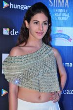 Amyra Dastur at siima awards press meet on 3rd June 2016 (63)_5752d27badd63.JPG
