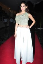 Amyra Dastur at siima awards press meet on 3rd June 2016 (8)_5752d22f7dc7d.JPG