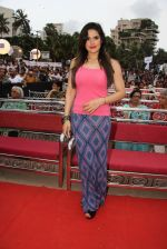 Zarine Khan at Asif Bhamla foundation event on world environment day in Mumbai on 5th June 2016 (103)_57551b576615a.JPG