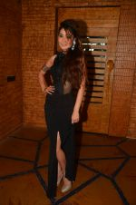 Sara Khan at the photo shoot on travel theme on 7th June 2016 (28)_5757b5f9e3241.JPG