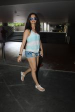Surveen Chawla snapped at the airport in Mumbai on 7th June 2016 (14)_5757b562239ad.JPG