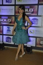 Aarti Chhabria at ZEE Gold Awards on 9th June 2016 (98)_575a8796d66df.JPG