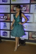 Aarti Chhabria at ZEE Gold Awards on 9th June 2016