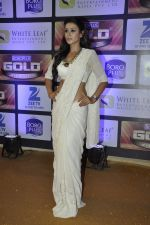 Barkha Bisht at ZEE Gold Awards on 9th June 2016
