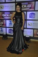 Hina Khan at ZEE Gold Awards on 9th June 2016 (35)_575a87f262047.JPG