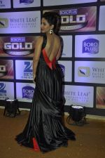 Hina Khan at ZEE Gold Awards on 9th June 2016 (33)_575a87f137f9d.JPG