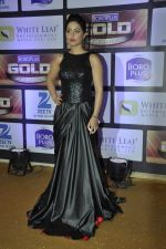 Hina Khan at ZEE Gold Awards on 9th June 2016 (34)_575a87f1c3549.JPG