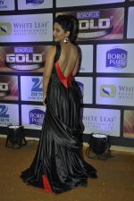 Hina Khan at ZEE Gold Awards on 9th June 2016 (39)_575a87f49804d.JPG