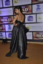 Mouni Roy at ZEE Gold Awards on 9th June 2016