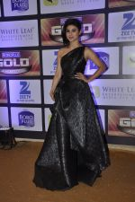 Mouni Roy at ZEE Gold Awards on 9th June 2016 (191)_575a88530f135.JPG