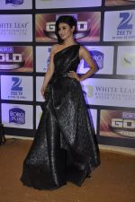 Mouni Roy at ZEE Gold Awards on 9th June 2016 (192)_575a8853c47d4.JPG