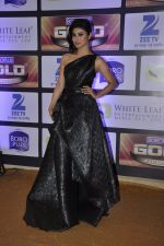 Mouni Roy at ZEE Gold Awards on 9th June 2016 (193)_575a8854851cb.JPG