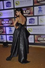 Mouni Roy at ZEE Gold Awards on 9th June 2016 (194)_575a88555529b.JPG