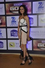Sargun Mehta at ZEE Gold Awards on 9th June 2016 (152)_575a886ac7a8b.JPG