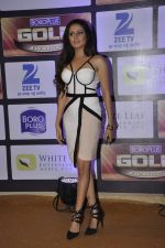 Sargun Mehta at ZEE Gold Awards on 9th June 2016 (153)_575a886b6af44.JPG