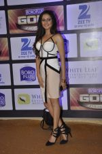 Sargun Mehta at ZEE Gold Awards on 9th June 2016 (154)_575a886c0a939.JPG