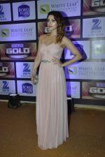 Shama Sikander at ZEE Gold Awards on 9th June 2016