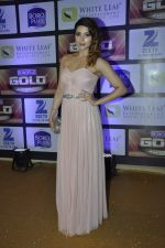 Shama Sikander at ZEE Gold Awards on 9th June 2016 (97)_575a887b2d1d7.JPG