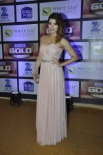 Shama Sikander at ZEE Gold Awards on 9th June 2016 (98)_575a887bbdab6.JPG