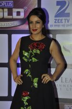 Tisca Chopra at ZEE Gold Awards on 9th June 2016 (25)_575a88a796874.JPG