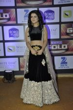 at ZEE Gold Awards on 9th June 2016 (119)_575a87fc934fb.JPG