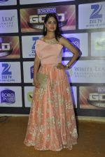 at ZEE Gold Awards on 9th June 2016 (123)_575a87fd418ca.JPG
