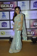 at ZEE Gold Awards on 9th June 2016 (124)_575a87fdd654c.JPG
