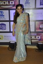 at ZEE Gold Awards on 9th June 2016 (125)_575a87fe759b9.JPG