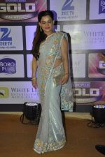 at ZEE Gold Awards on 9th June 2016 (126)_575a87ff108ef.JPG