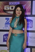 at ZEE Gold Awards on 9th June 2016 (130)_575a880226ad8.JPG
