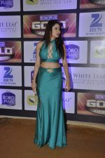 at ZEE Gold Awards on 9th June 2016 (131)_575a8802ce88a.JPG