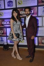 at ZEE Gold Awards on 9th June 2016 (146)_575a88042f303.JPG