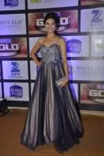 at ZEE Gold Awards on 9th June 2016 (156)_575a8805e63c3.JPG