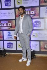 at ZEE Gold Awards on 9th June 2016 (163)_575a8811805d2.JPG