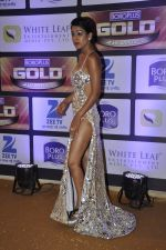 at ZEE Gold Awards on 9th June 2016 (165)_575a8814a35a2.JPG