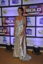 at ZEE Gold Awards on 9th June 2016 (167)_575a8817c3437.JPG