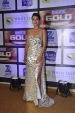 at ZEE Gold Awards on 9th June 2016 (168)_575a88191de86.JPG