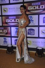 at ZEE Gold Awards on 9th June 2016 (170)_575a881b9075f.JPG