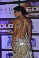 at ZEE Gold Awards on 9th June 2016 (171)_575a881caca7e.JPG