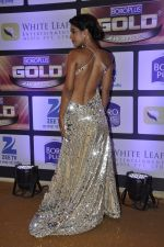 at ZEE Gold Awards on 9th June 2016 (172)_575a88216580b.JPG