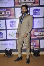 at ZEE Gold Awards on 9th June 2016 (173)_575a8823b4e45.JPG