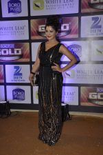 at ZEE Gold Awards on 9th June 2016 (181)_575a882a3d6e6.JPG