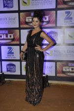 at ZEE Gold Awards on 9th June 2016 (182)_575a882b58986.JPG