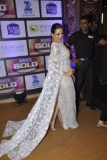 at ZEE Gold Awards on 9th June 2016 (183)_575a882c602b7.JPG