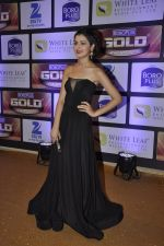 at ZEE Gold Awards on 9th June 2016 (184)_575a882ce9cb8.JPG
