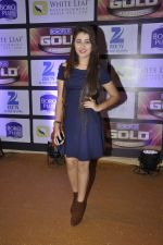at ZEE Gold Awards on 9th June 2016 (191)_575a882e2a06b.JPG